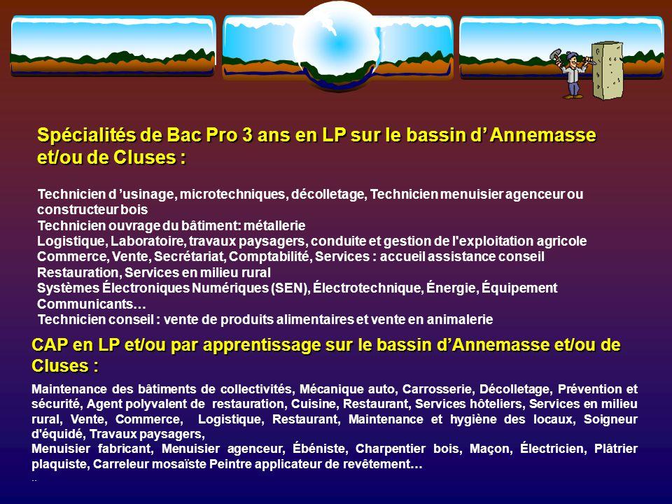 Spécialités de Bac Pro 3 ans en LP sur le bassin d' Annemasse et/ou de Cluses :