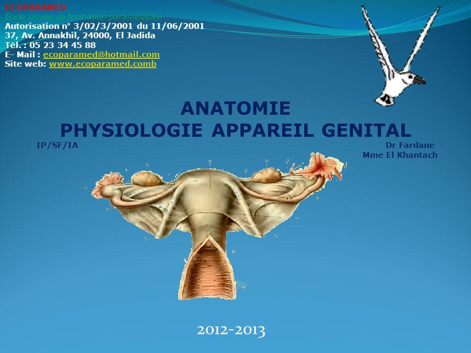 ANATOMIE PHYSIOLOGIE APPAREIL GENITAL
