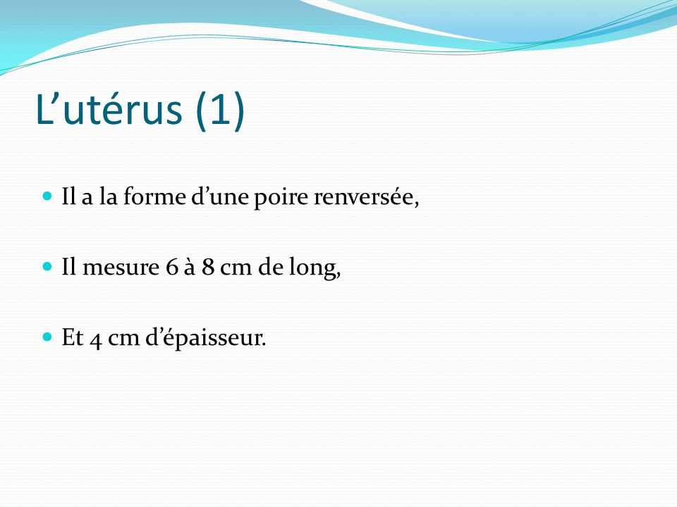 L'utérus (1) Il a la forme d'une poire renversée,