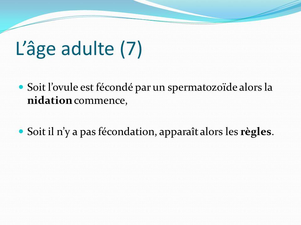 L'âge adulte (7) Soit l'ovule est fécondé par un spermatozoïde alors la nidation commence, Soit il n'y a pas fécondation, apparaît alors les règles.