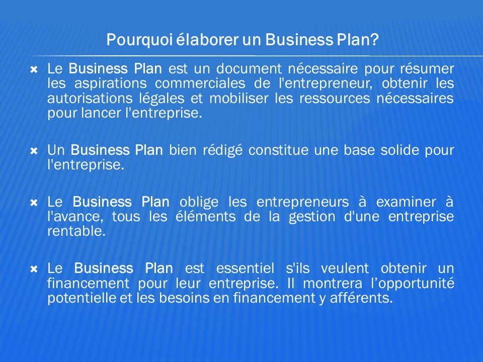 Pourquoi élaborer un Business Plan