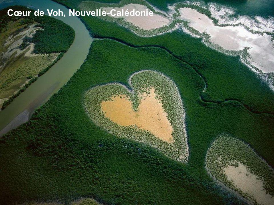 Cœur de Voh, Nouvelle-Calédonie