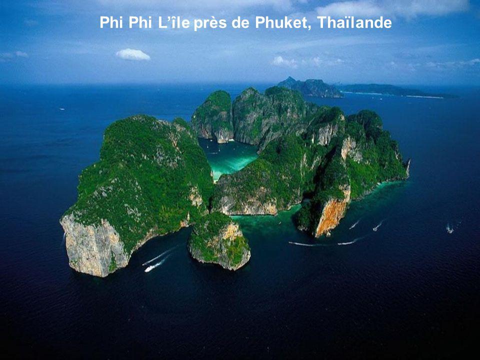 Phi Phi L'île près de Phuket, Thaïlande
