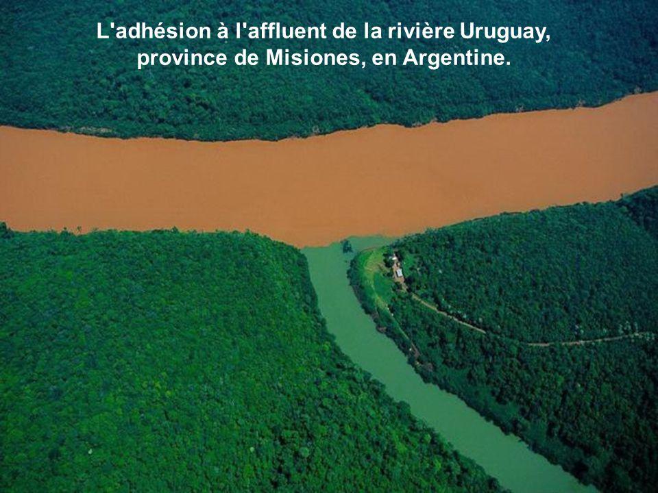 L adhésion à l affluent de la rivière Uruguay, province de Misiones, en Argentine.