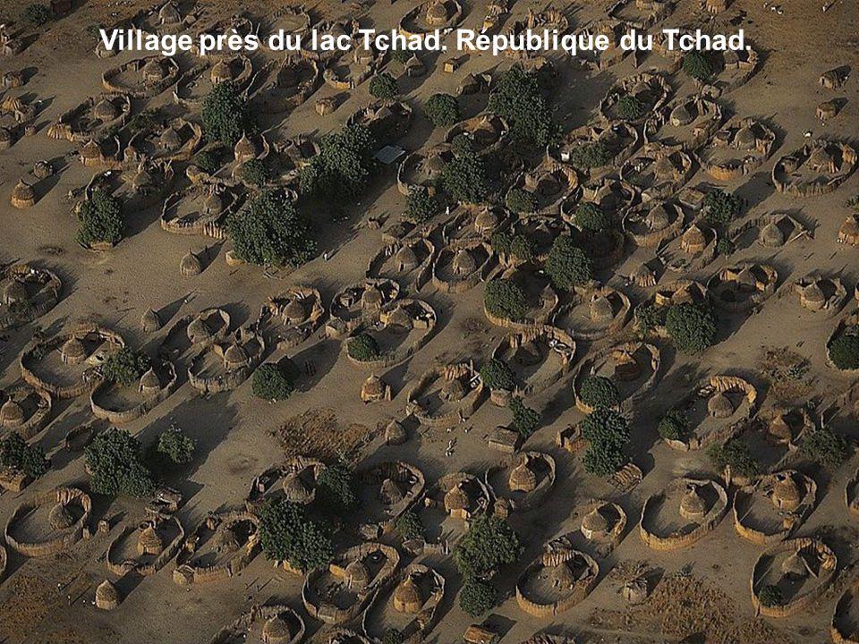 Village près du lac Tchad. République du Tchad.