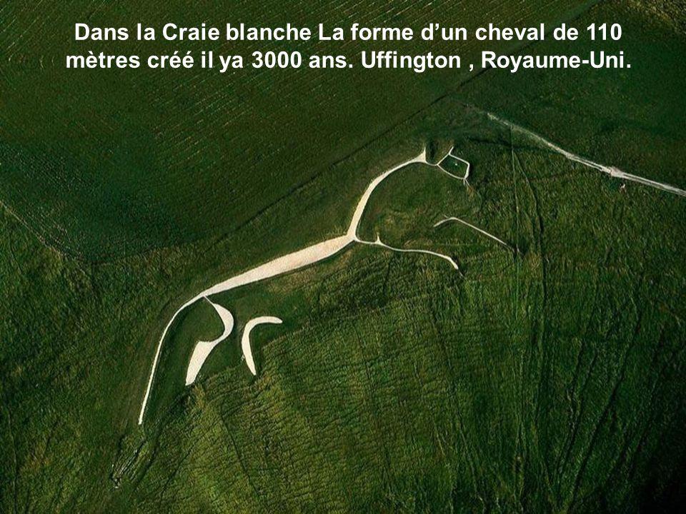Dans la Craie blanche La forme d'un cheval de 110 mètres créé il ya 3000 ans.