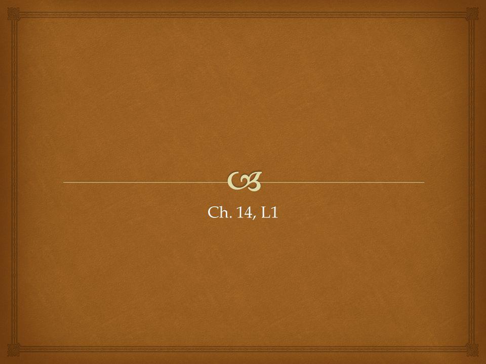 FREN 1163 Ch. 14, L1