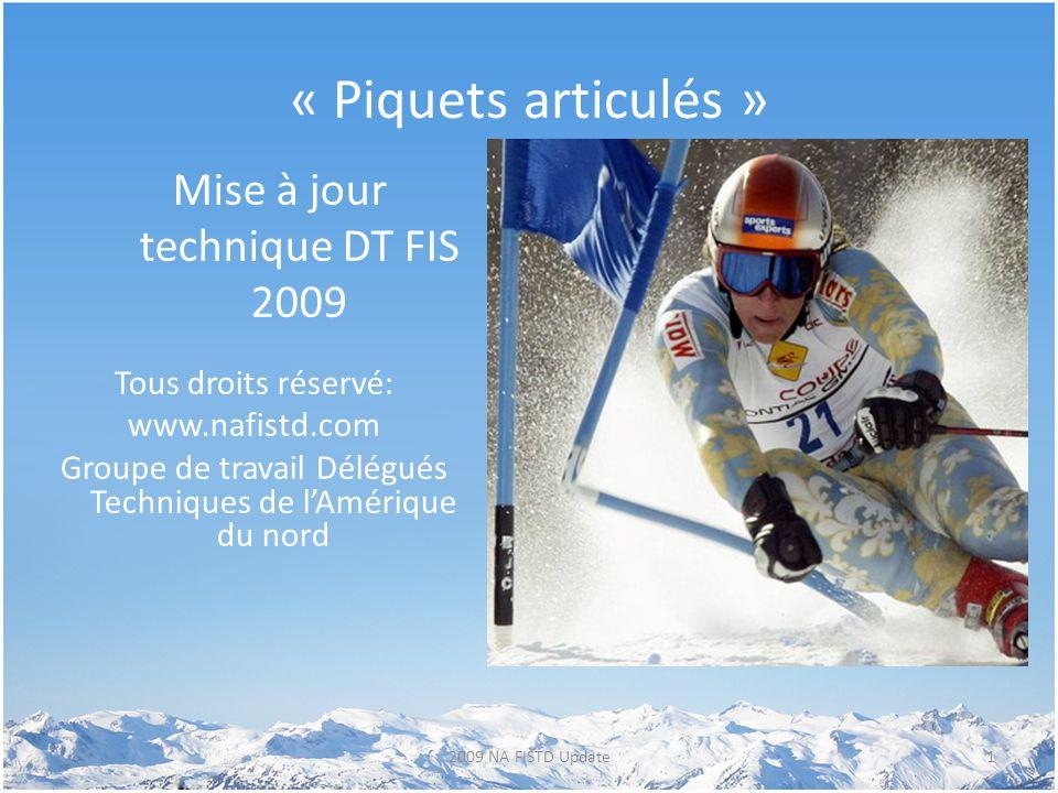 « Piquets articulés » Mise à jour technique DT FIS 2009