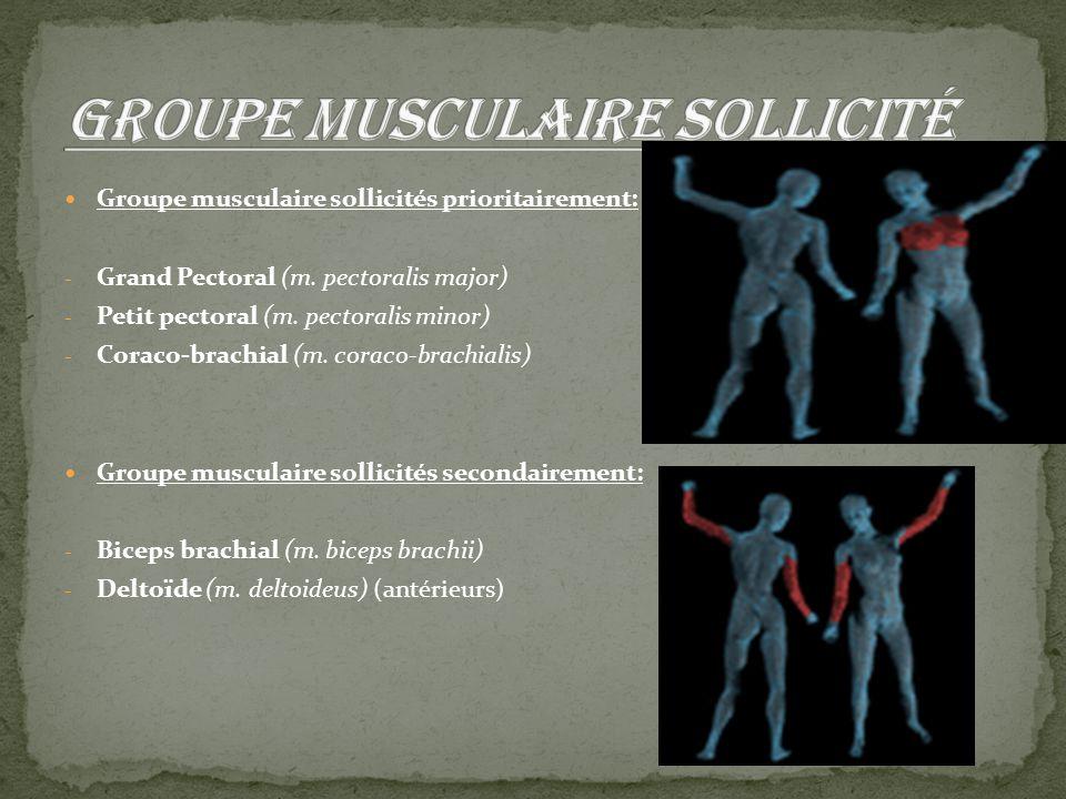 Groupe musculaire sollicité