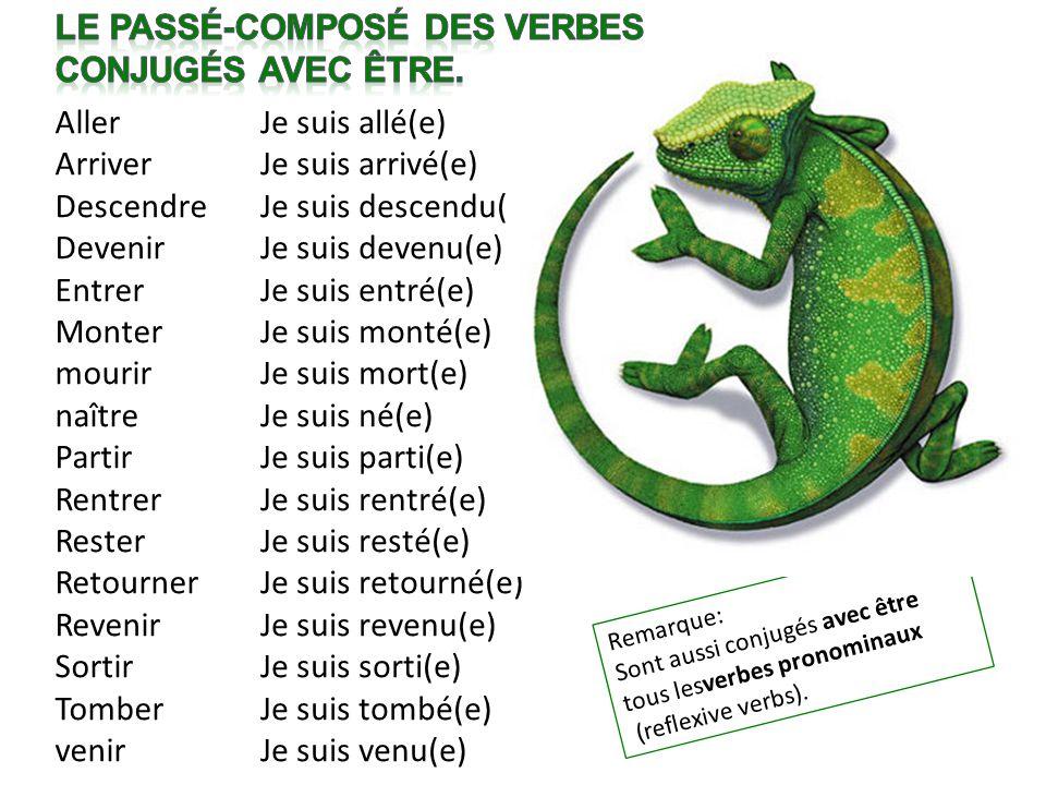 Le passé-composé des verbes Conjugés avec être.