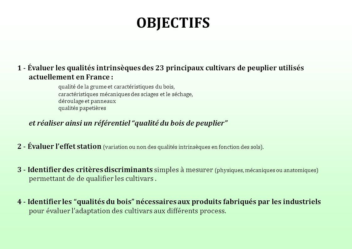 OBJECTIFS 1 - Évaluer les qualités intrinsèques des 23 principaux cultivars de peuplier utilisés actuellement en France :