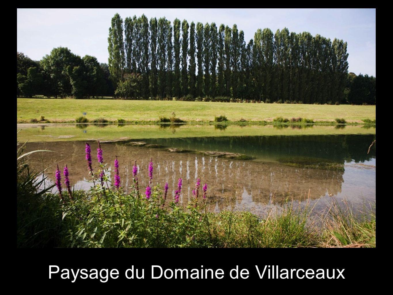 Paysage du Domaine de Villarceaux