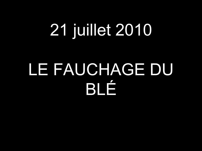 21 juillet 2010 LE FAUCHAGE DU BLÉ