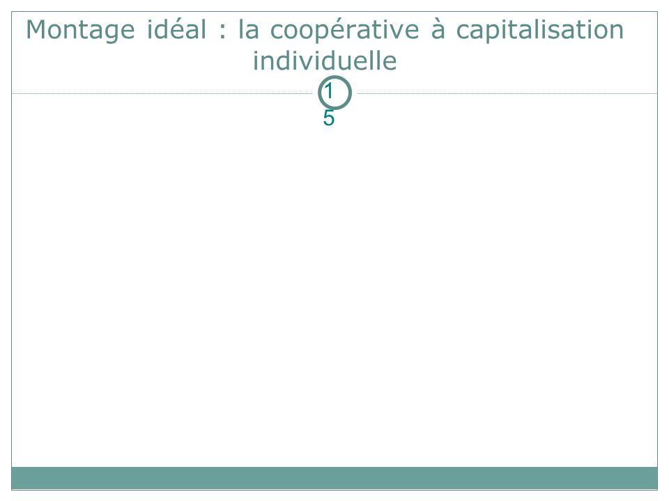 Montage idéal : la coopérative à capitalisation individuelle