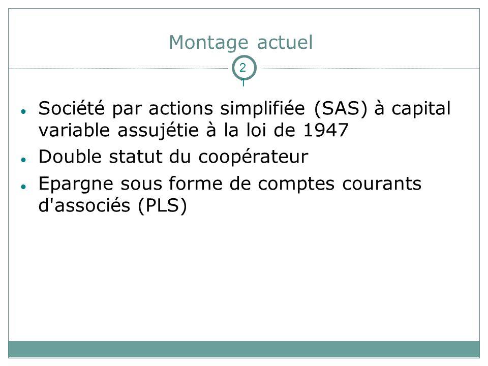 Montage actuel 2121. Société par actions simplifiée (SAS) à capital variable assujétie à la loi de 1947.