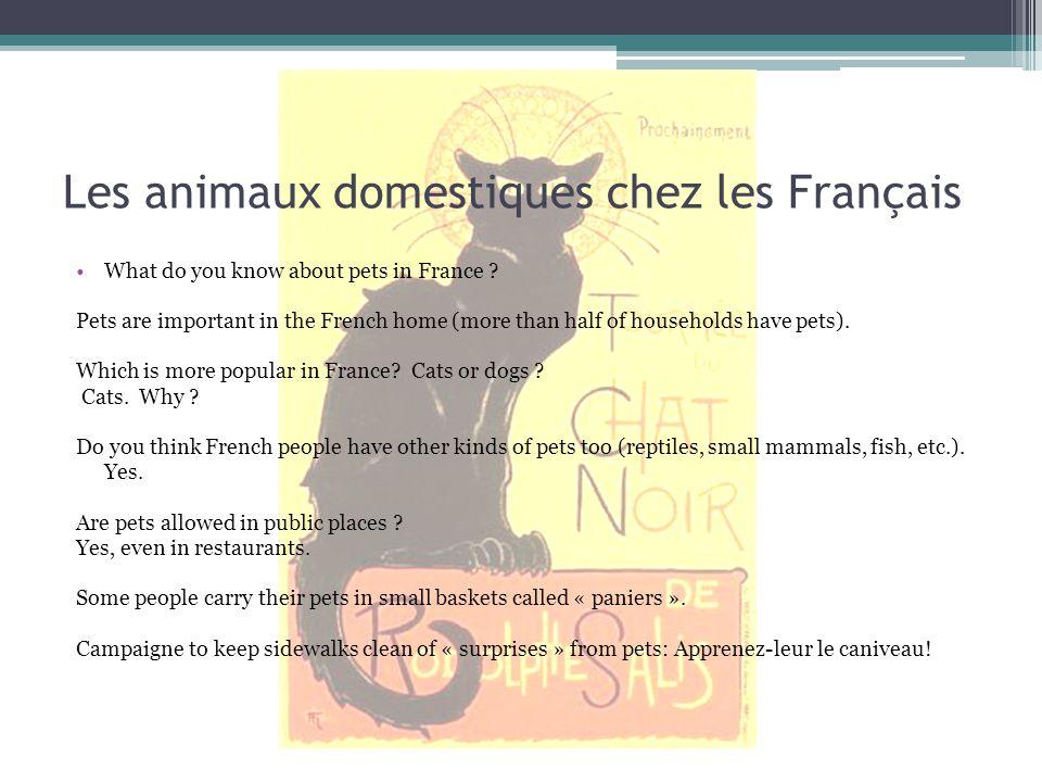Les animaux domestiques chez les Français