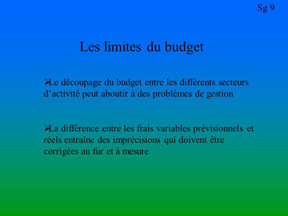 Les limites du budget Le découpage du budget entre les différents secteurs d'activité peut aboutir à des problèmes de gestion.