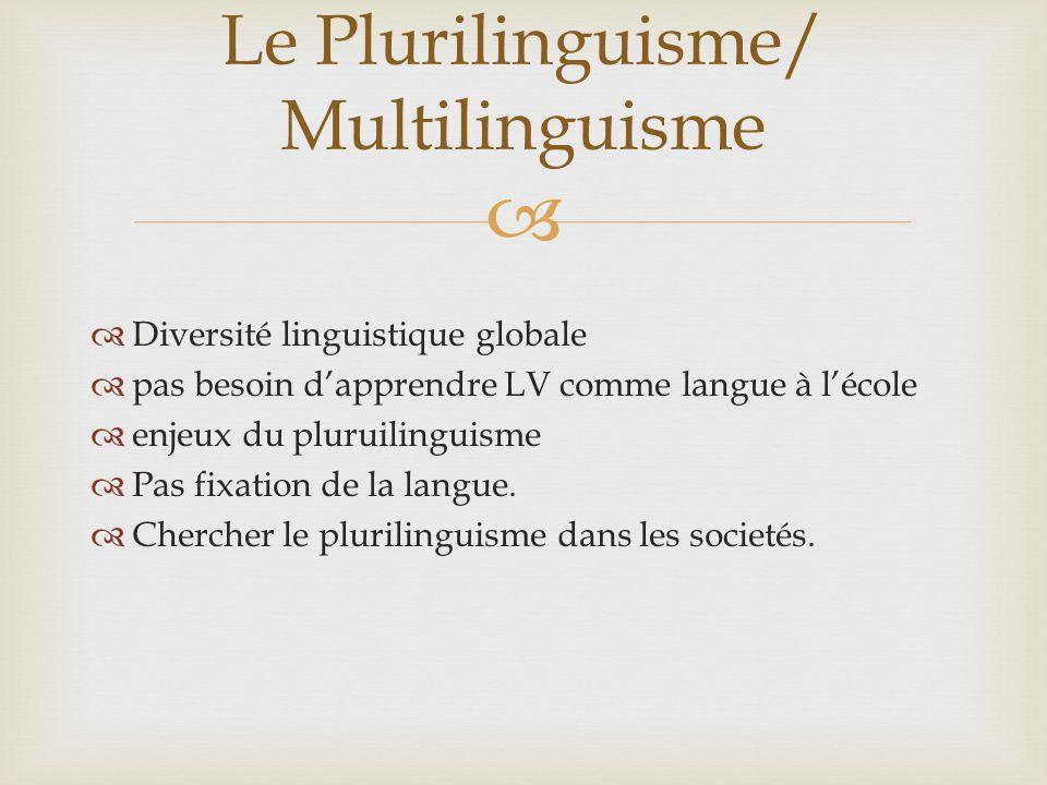 Le Plurilinguisme/ Multilinguisme