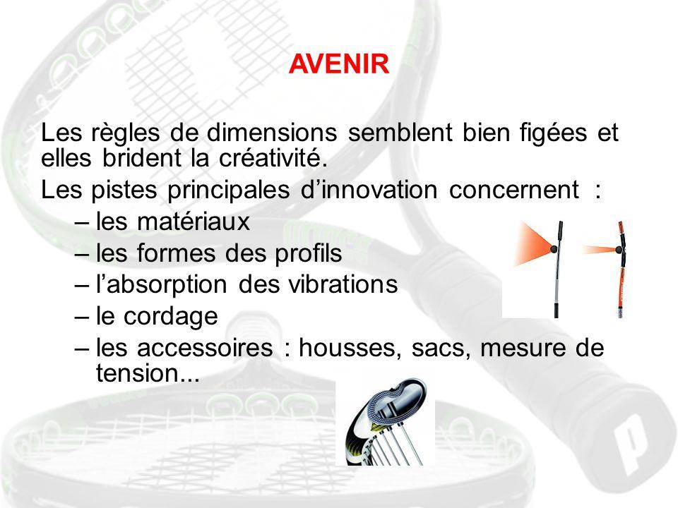 AVENIR Les règles de dimensions semblent bien figées et elles brident la créativité. Les pistes principales d'innovation concernent :