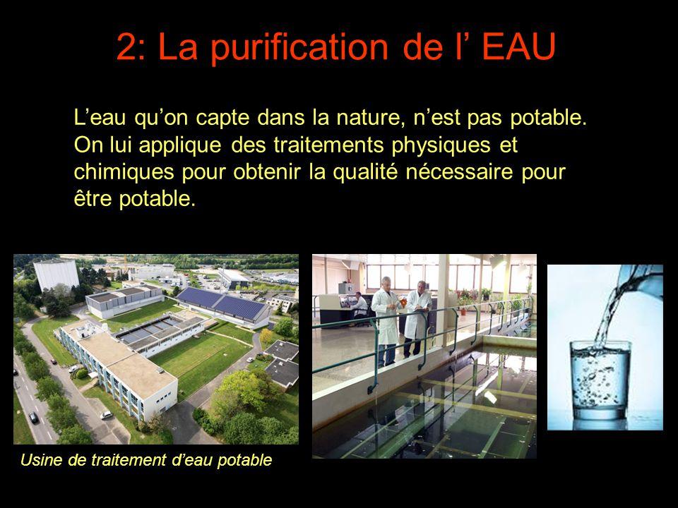 2: La purification de l' EAU