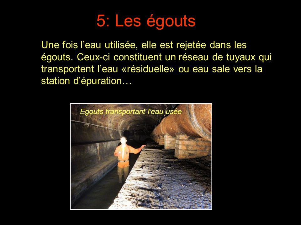 5: Les égouts