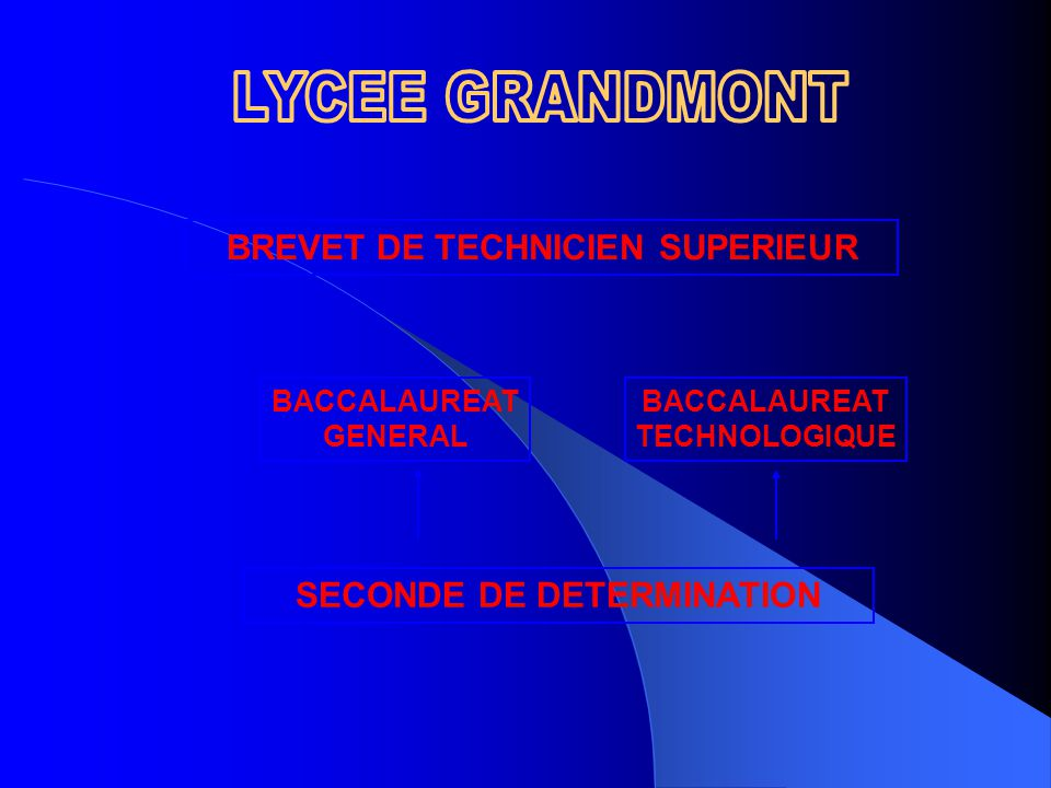 BREVET DE TECHNICIEN SUPERIEUR SECONDE DE DETERMINATION