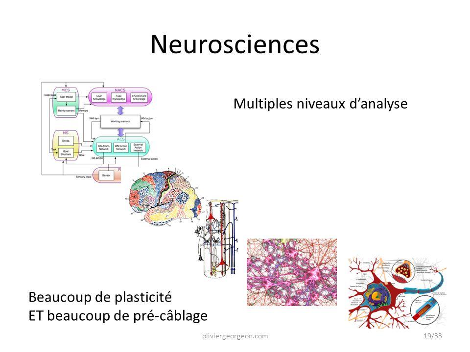 Neurosciences Multiples niveaux d'analyse Beaucoup de plasticité
