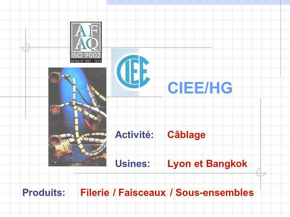 CIEE/HG Activité: Câblage Usines: Lyon et Bangkok