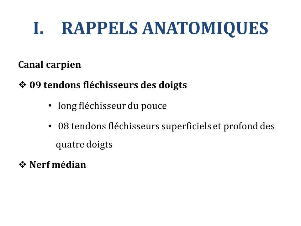 RAPPELS ANATOMIQUES Canal carpien 09 tendons fléchisseurs des doigts