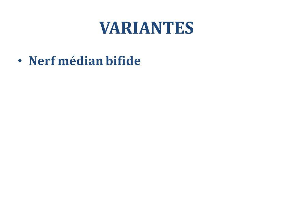 VARIANTES Nerf médian bifide