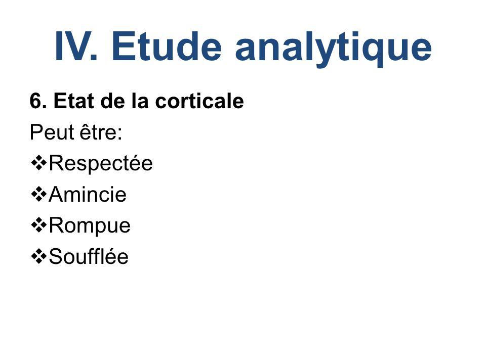 IV. Etude analytique 6. Etat de la corticale Peut être: Respectée