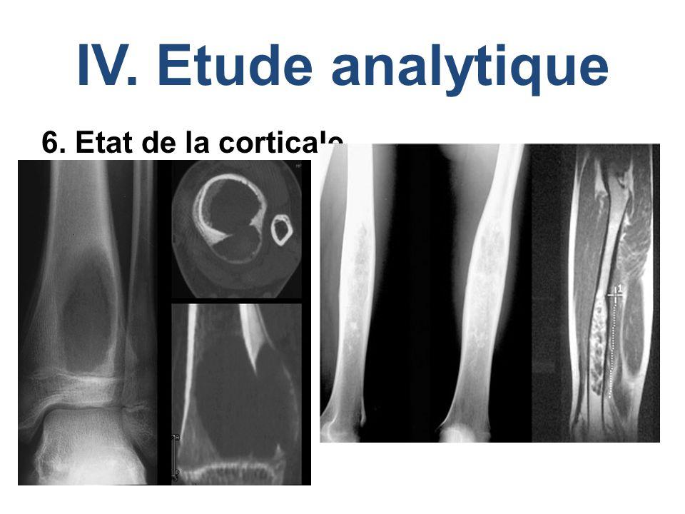 IV. Etude analytique 6. Etat de la corticale