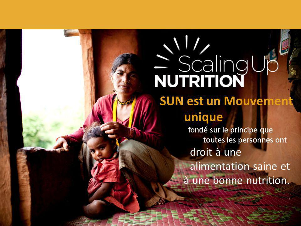 SUN est un Mouvement unique à une bonne nutrition.