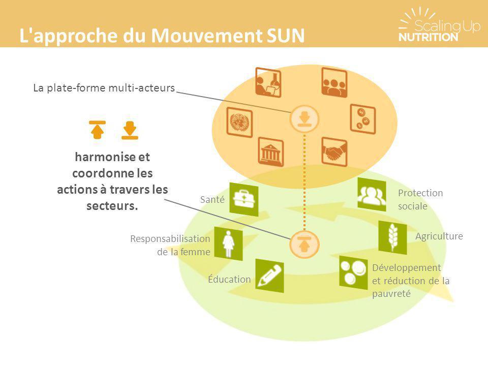 harmonise et coordonne les actions à travers les secteurs.