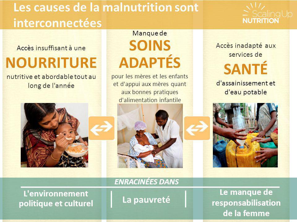 SOINS ADAPTÉS Les causes de la malnutrition sont interconnectées