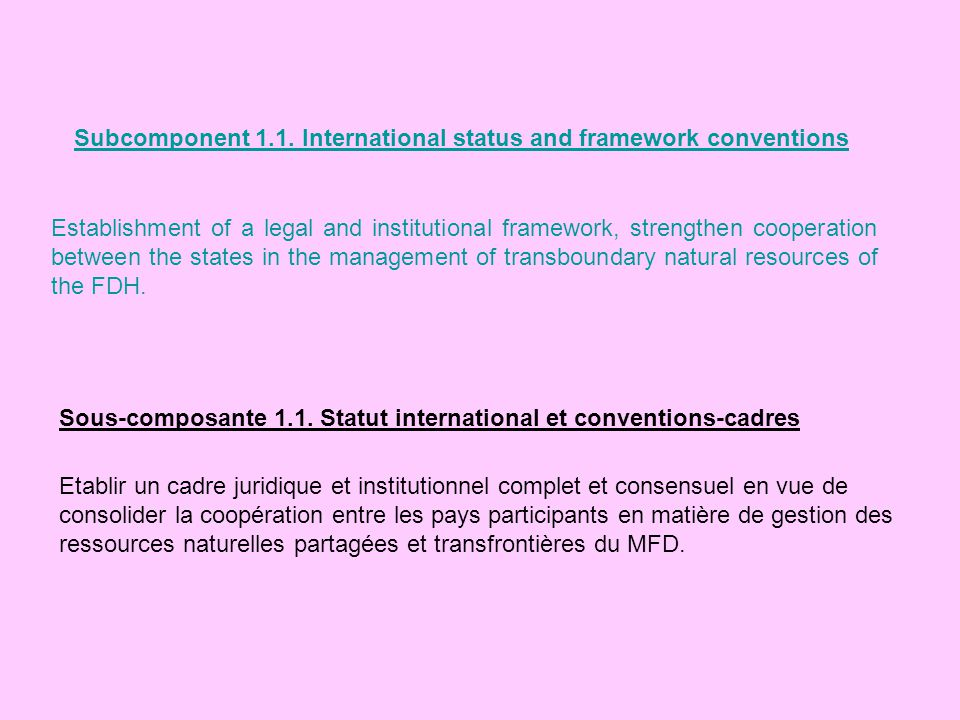 Subcomponent 1.1. International status and framework conventions