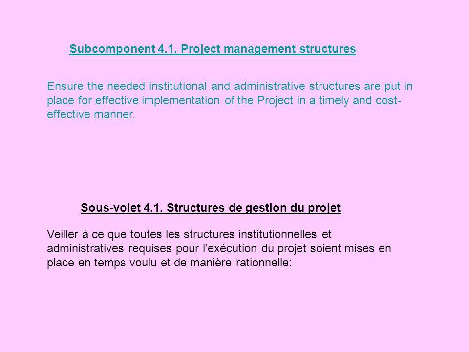 Subcomponent 4.1. Project management structures