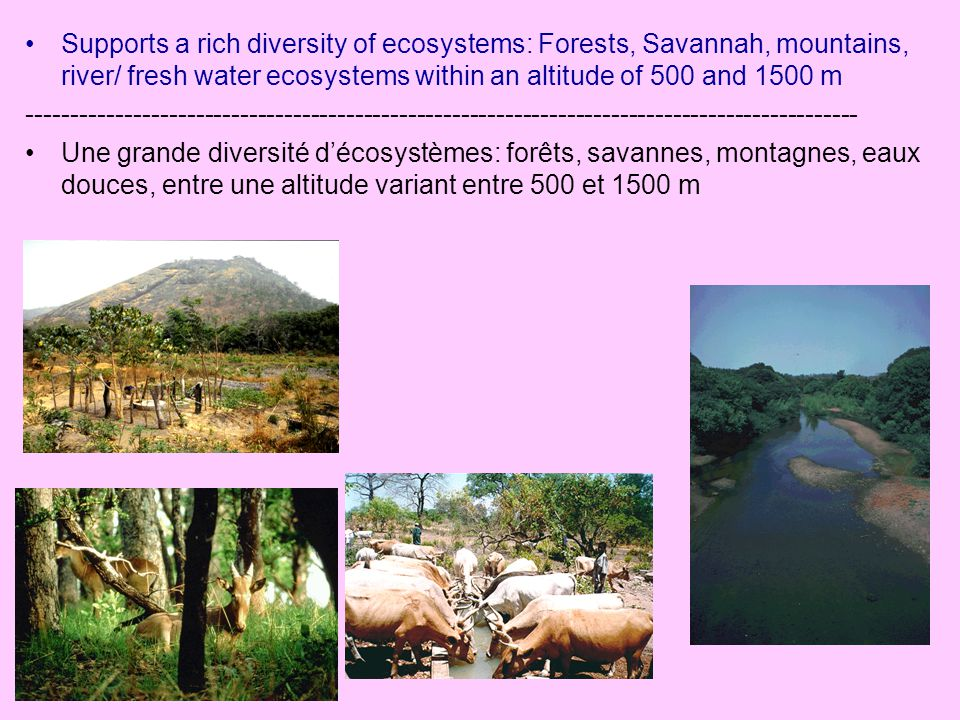Supports a rich diversity of ecosystems: Forests, Savannah, mountains, river/ fresh water ecosystems within an altitude of 500 and 1500 m