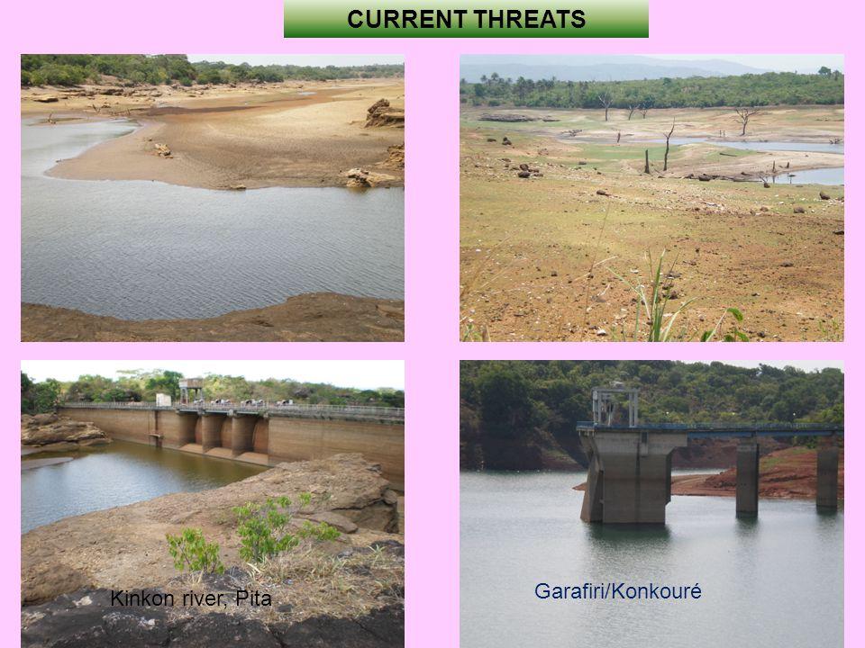 CURRENT THREATS Garafiri/Konkouré Kinkon river, Pita