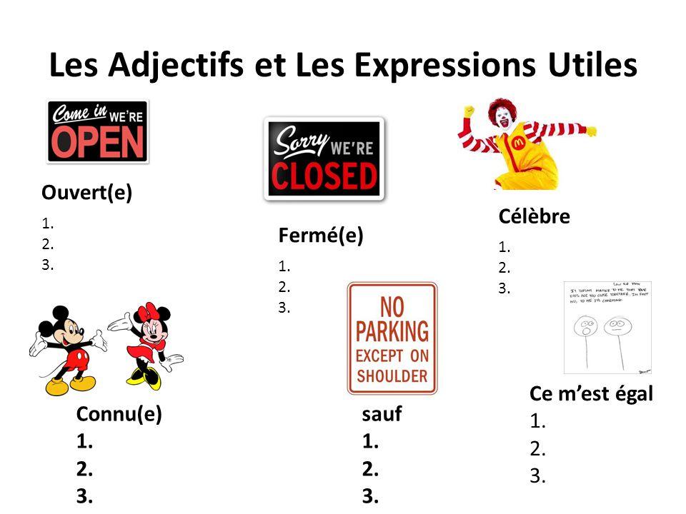 Les Adjectifs et Les Expressions Utiles