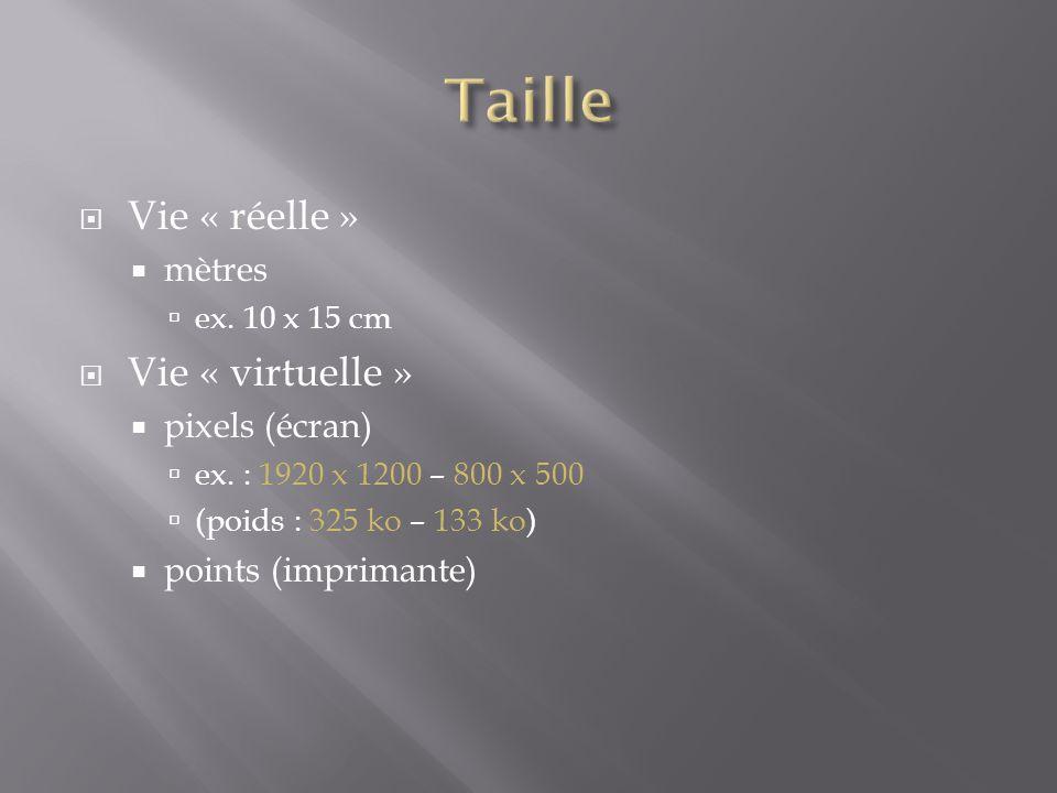 Taille Vie « réelle » Vie « virtuelle » mètres pixels (écran)