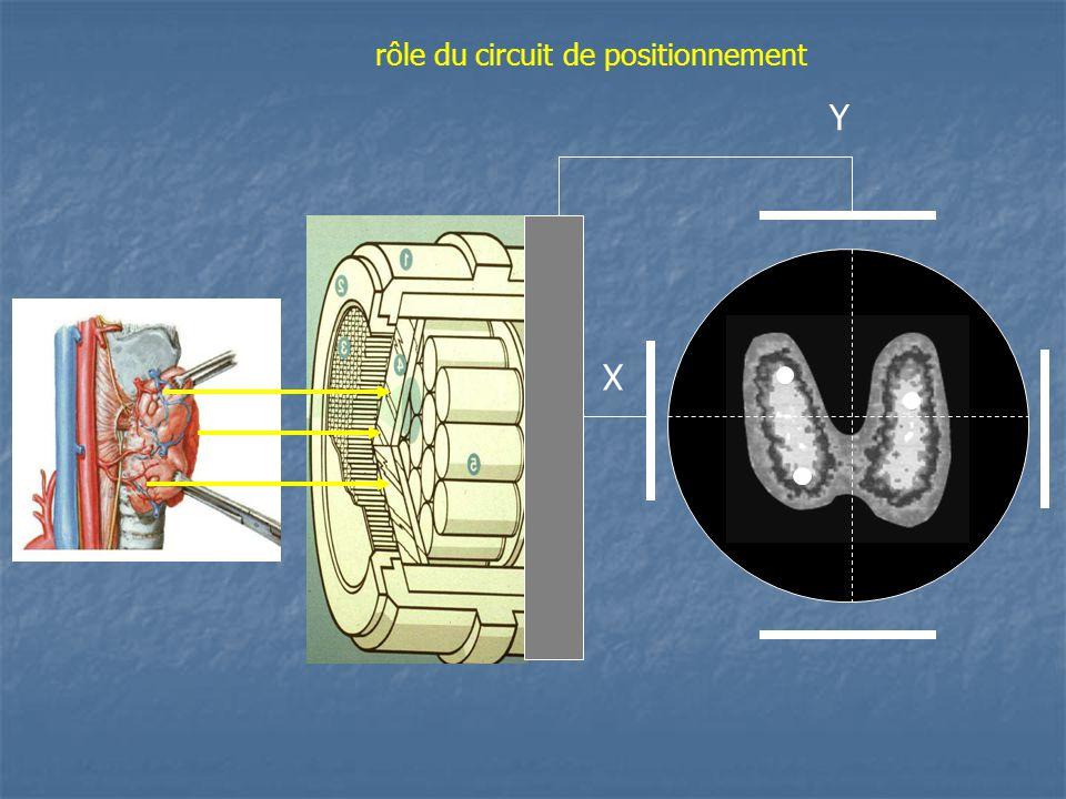 rôle du circuit de positionnement