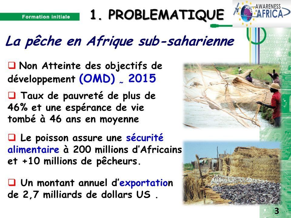 La pêche en Afrique sub-saharienne