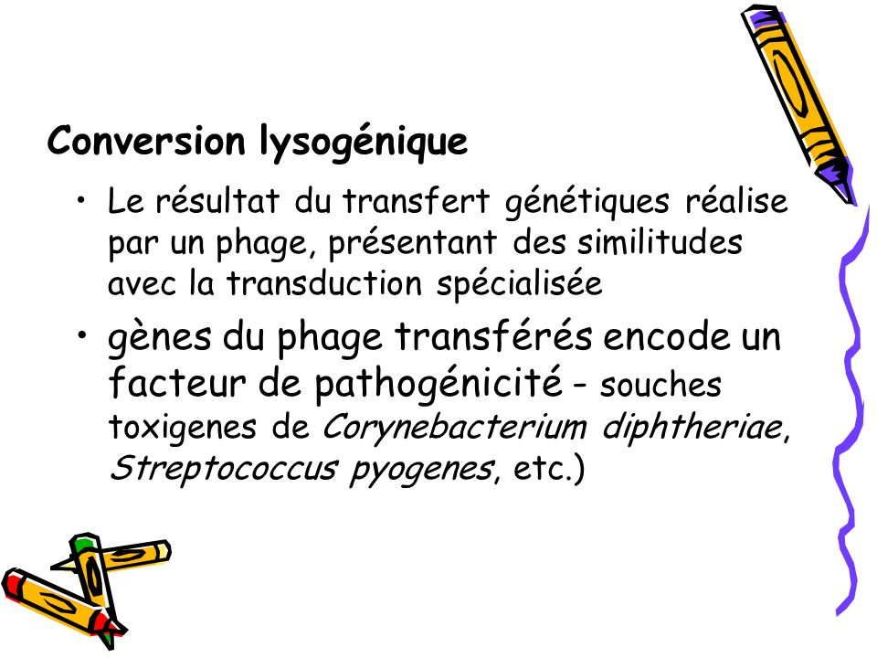 Conversion lysogénique