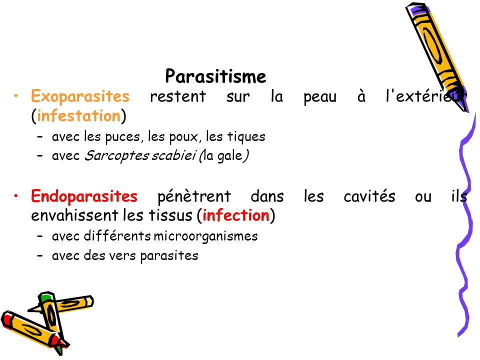 Parasitisme Exoparasites restent sur la peau à l extérieur (infestation) avec les puces, les poux, les tiques.