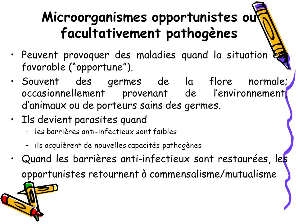 Microorganismes opportunistes ou facultativement pathogènes