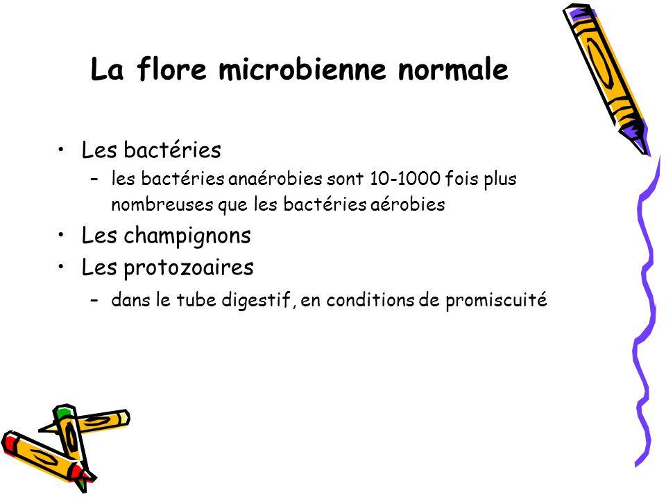 La flore microbienne normale