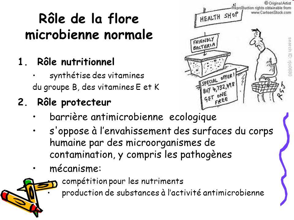 Rôle de la flore microbienne normale