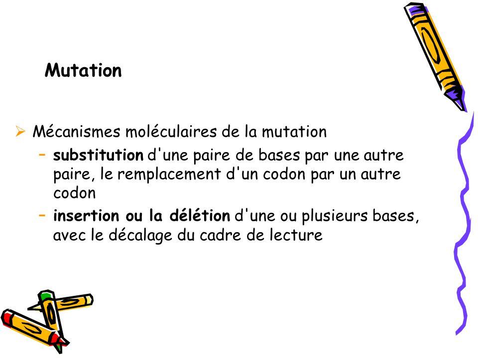 Mutation Mécanismes moléculaires de la mutation
