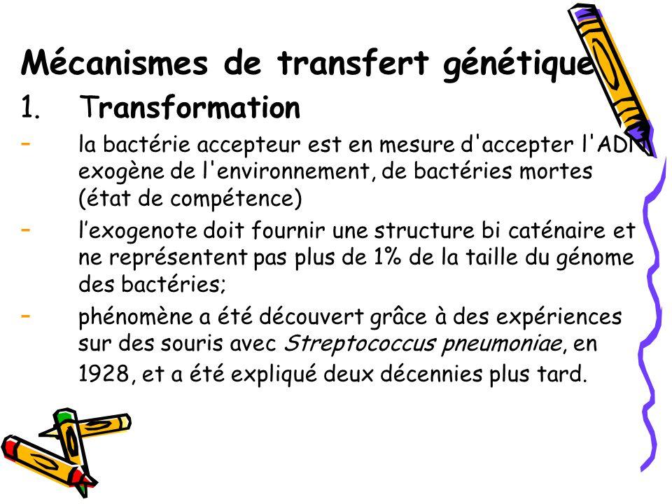 Mécanismes de transfert génétique